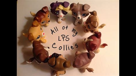 All of my LPS Collies! (Updated) - YouTube