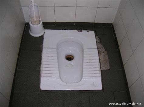 awesome toilet