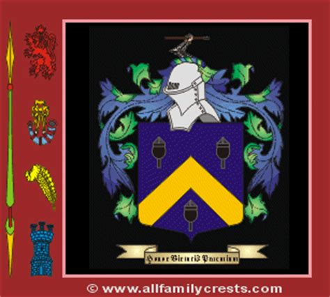 Palmer family crest and meaning of the coat of arms for