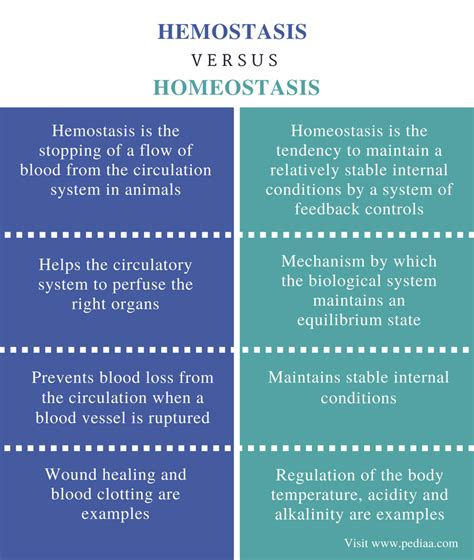 Difference Between Hemostasis and Homeostasis | Definition